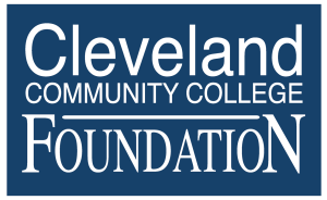 Foundation Logo-color2